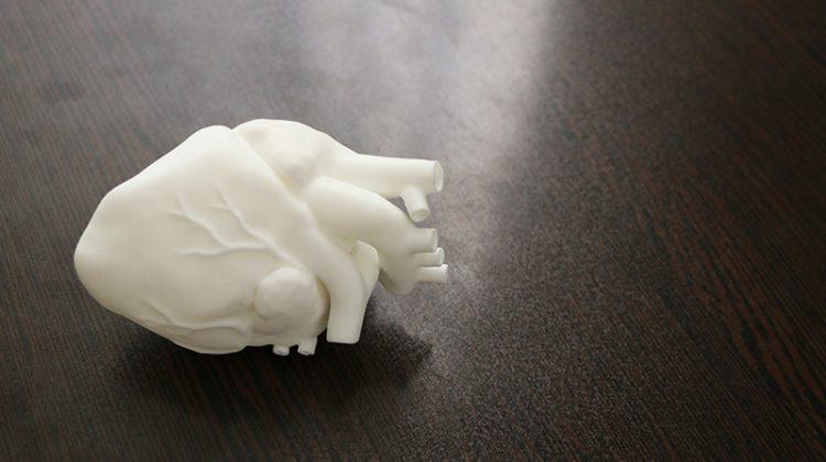 مدل قلب چاپ سه بعدی FDM