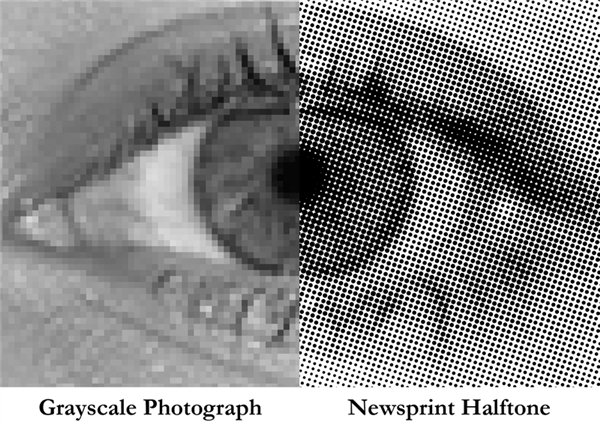 پرینت سه بعدی مدل مغز انسان
