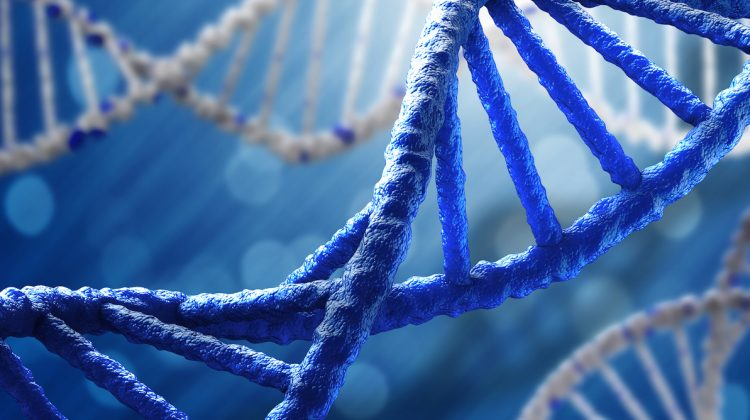 پرینت سه بعدی DNA
