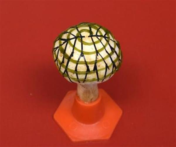 پرینت سه بعدی و تولید برق با قارچ!