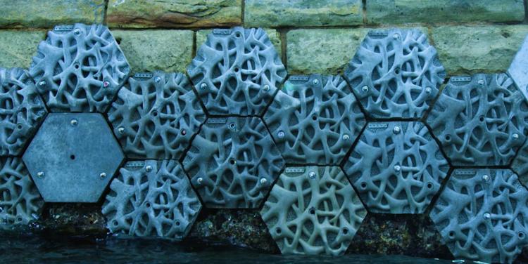 پرینت سه بعدی سد برای حفظ محیط زیست