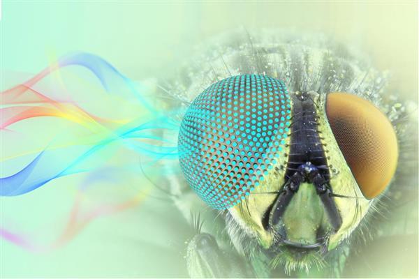 پرینت سه بعدی مواد با ویژگی های ریزموج و اپتیکی منحصر بفرد