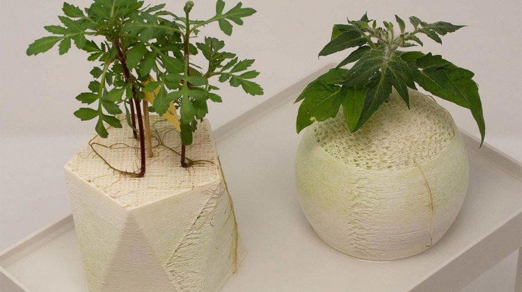 بستر های چاپ سه بعدی شده برای کشت گیاهان بدون خاک