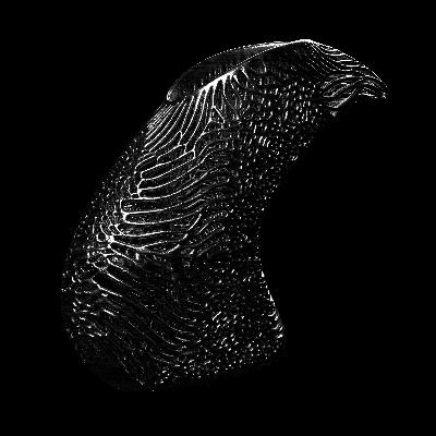 کفش های پرینت سه بعدی شده فلزی