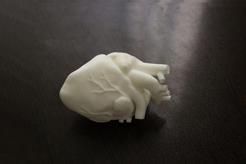 پرینت سه بعدی مدل قلب