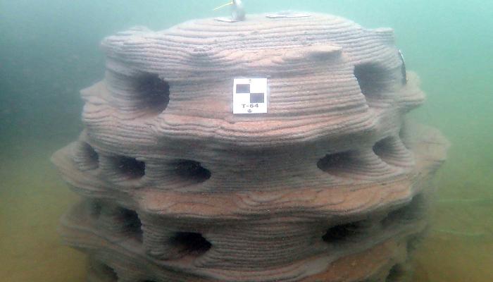 پرینت سه بعدی صخره های مصنوعی