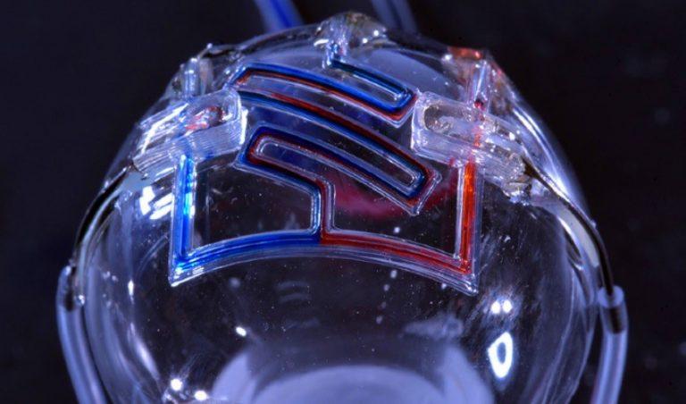 پرینت سه بعدی کانال های ریز سیال برای نخستین بار