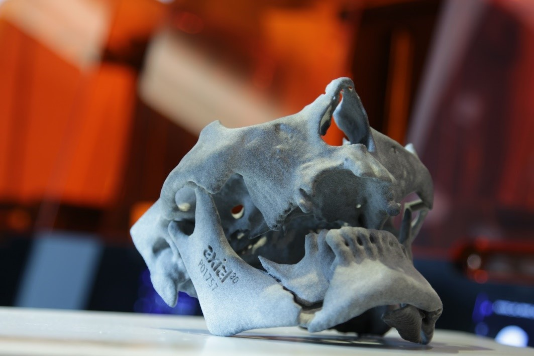 پرینت سه بعدی مدل های تشخیصی پیش از جراحی