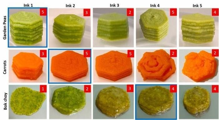 توسعه غذا برای بیماران دیسفاژی با استفاده از تکنولوژی پرینت سه بعدی